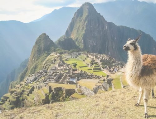Beautiful South America Expeditions